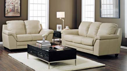 Picture of a Leather Sofa and Chair