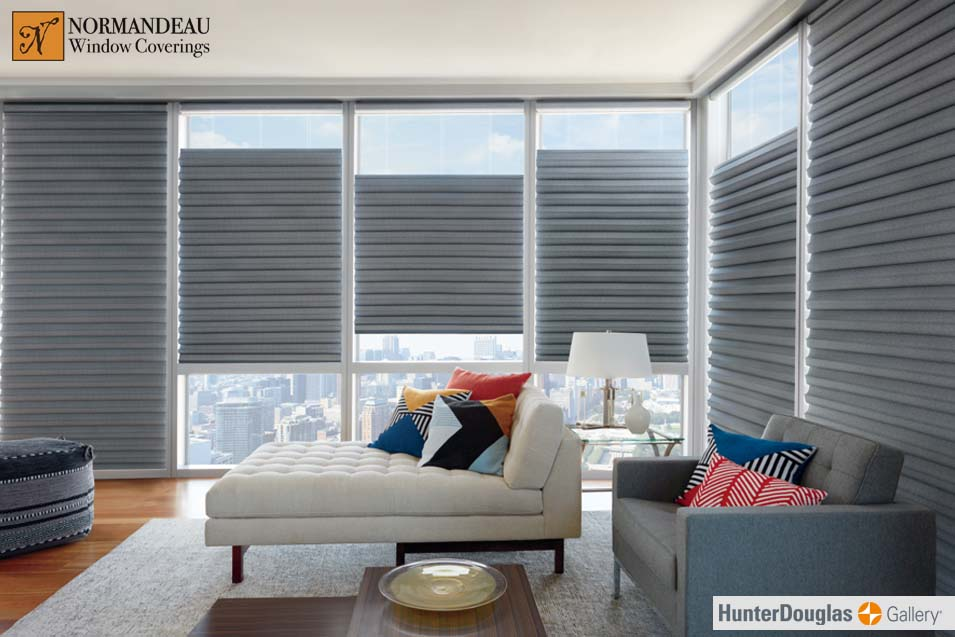 Picture of blinds in a living room