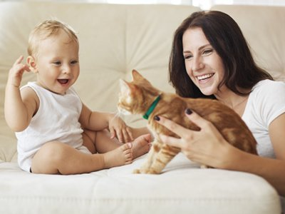 Picture of a cat with mom and daughter